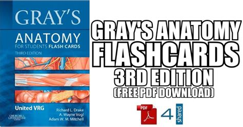 Gray's Anatomy for Students 3rd Edition PDF Free Download