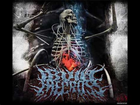 7 NEW Deathcore Bands - YouTube