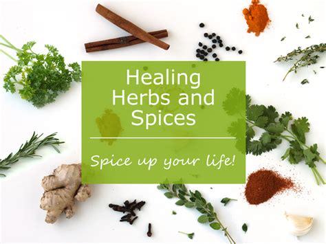 Healing Herbs and Spices by Jesse Lane Wellness - FREE eBook!